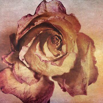 Rose in Time by OneDayArt
