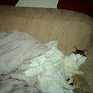 MR Mew Mew king of the couch... by jules / Missy frost