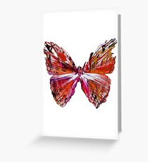 color butterfly Greeting Card