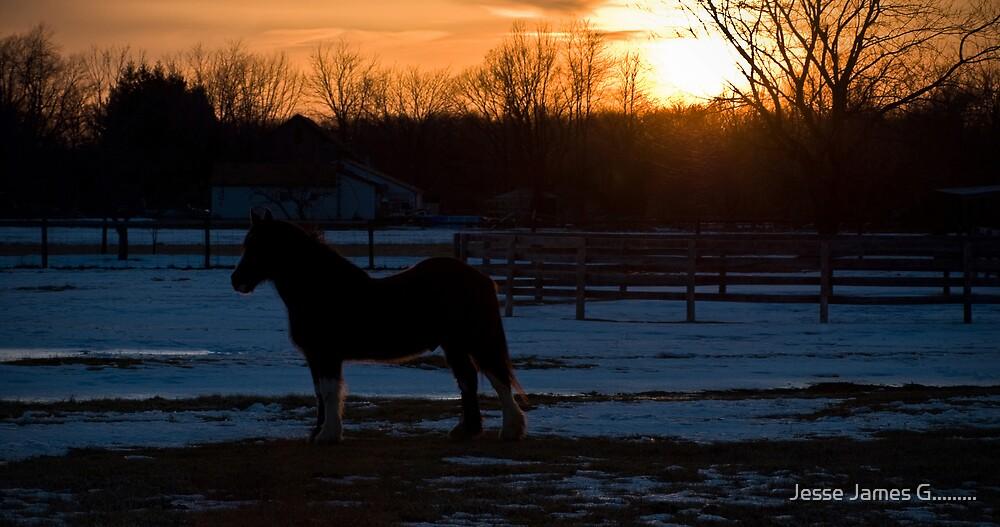 Sunset by Jesse James G.........