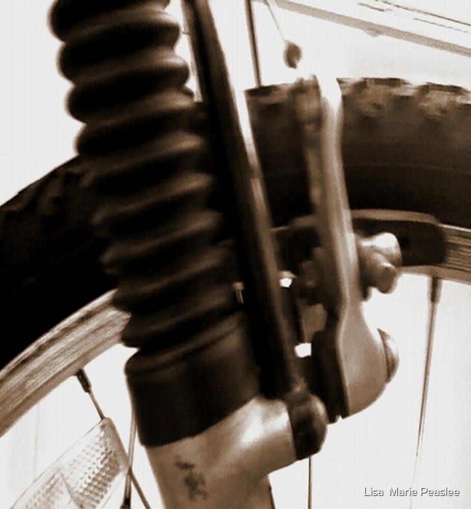 Bike Art 1  by Lisa  Marie Peaslee