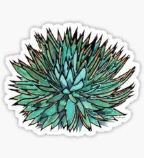 Spiky Green Agave Sticker