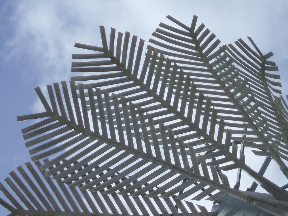 Sky Frond by kateannmorris