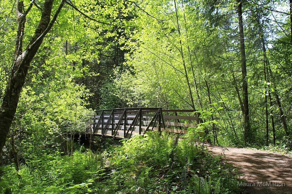 A Bridge In The Forest by Maura McMahon
