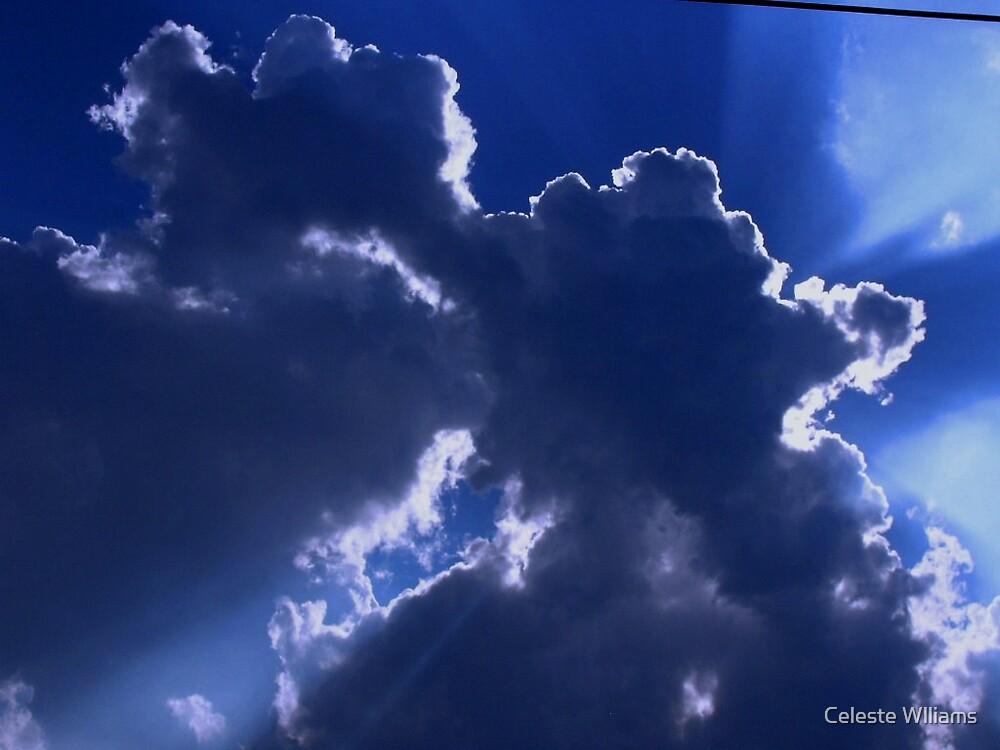 shining through by Celeste Wlliams
