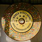 World Peace Gong, New Delhi, India by Barbara  Brown