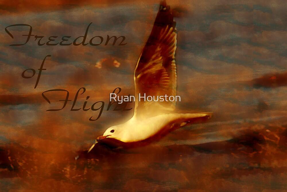 Freedom of Flight by Ryan Houston