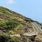 Kalanianaole Highway by WeeZie