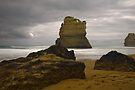 Gibsons Beach by Werner Padarin