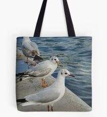 Nagging Tote Bag