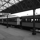 Dunedin Train Station by ksnugent