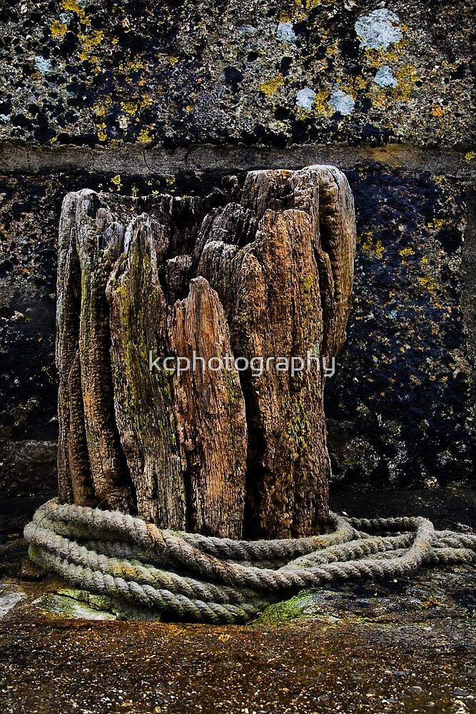 Ye Olde Oak by Richard Hamilton-Veal