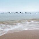 Old Pier Beach - Bridport - Tasmania by Glenda Williams