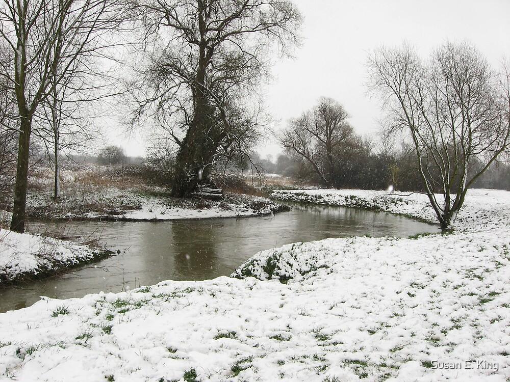 Snowy River  by Susan E. King