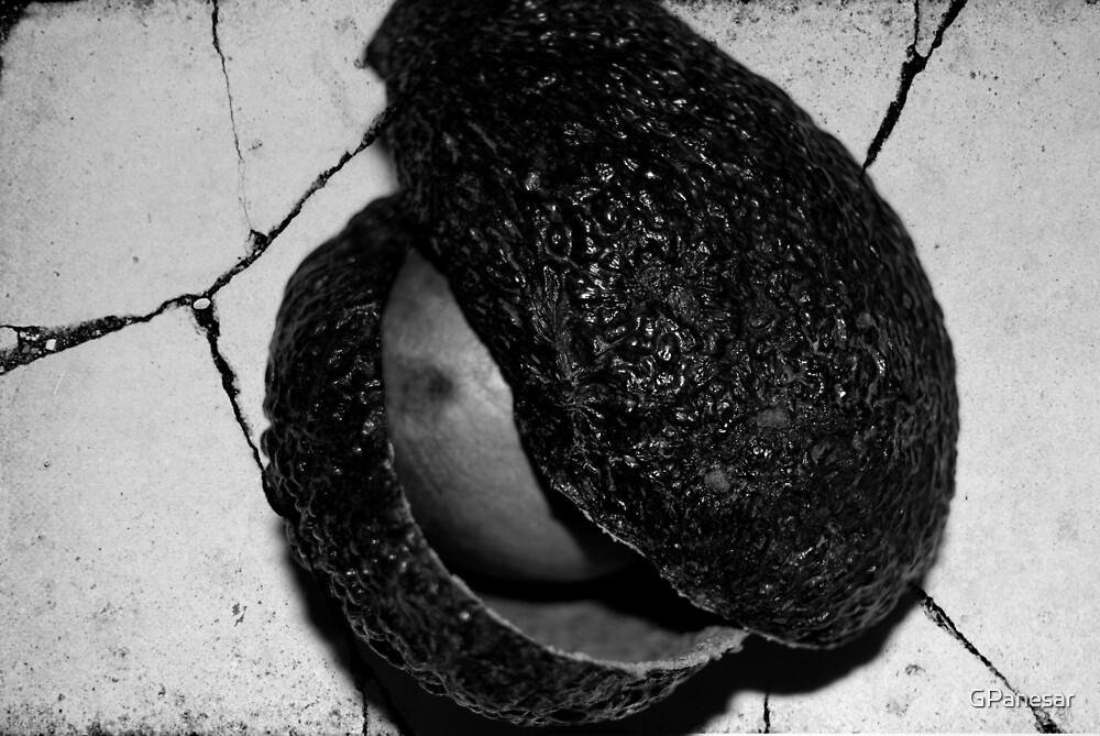 avocado by GPanesar