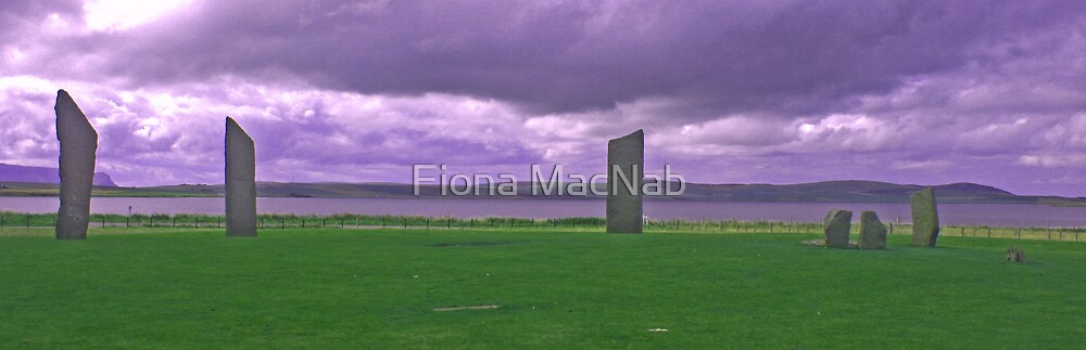 Stones of Stenness by Fiona MacNab