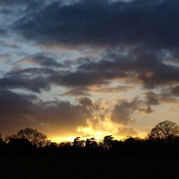 Twilight by shanecox704