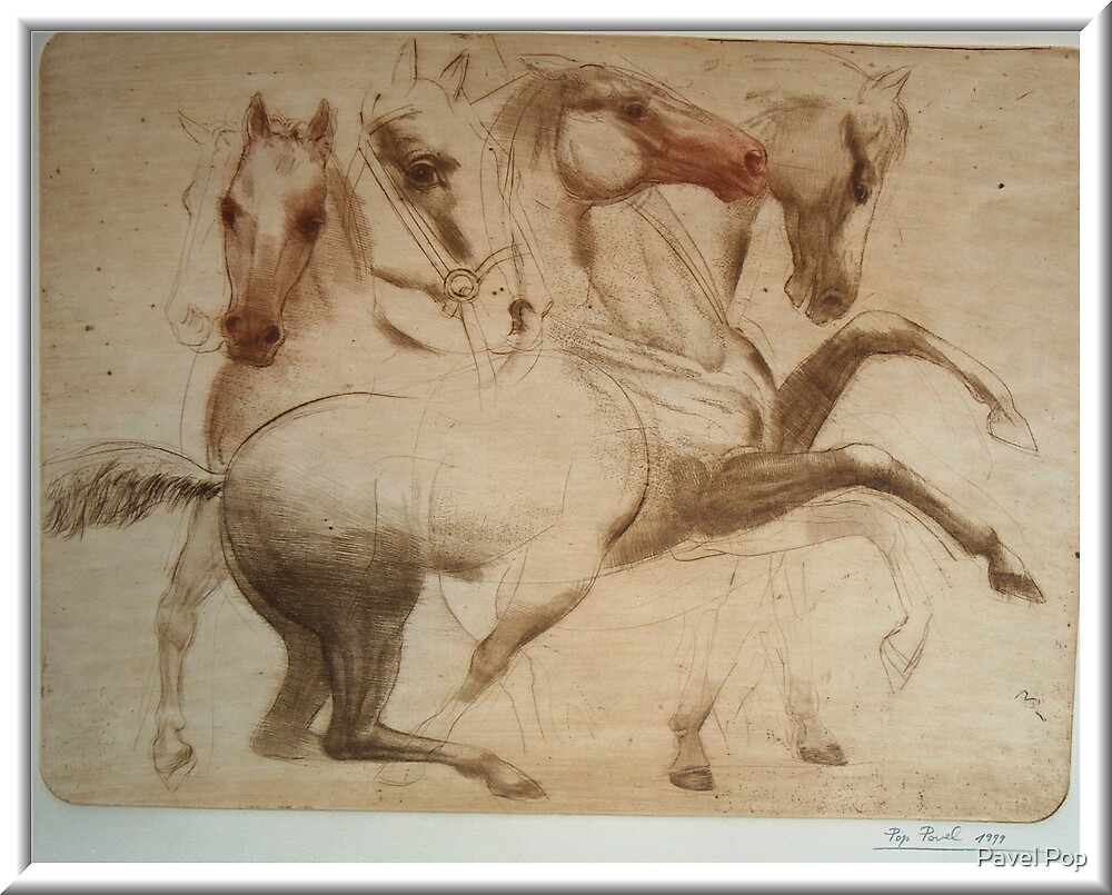 """Study of the Horses"" by Pavel Pop"