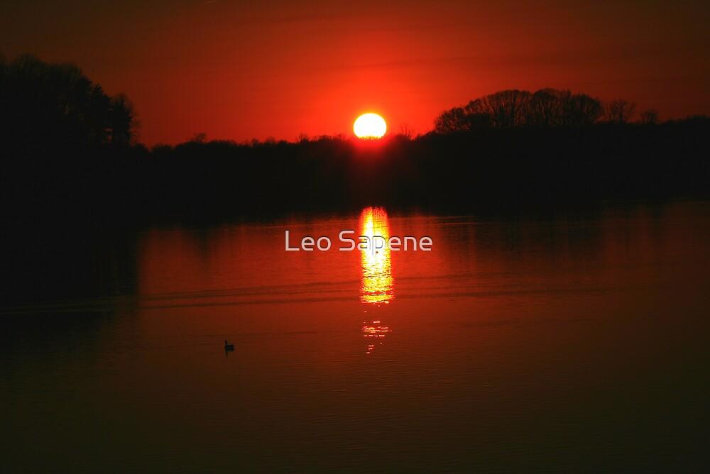 Quiet afternoon sun set by Leo Sapene