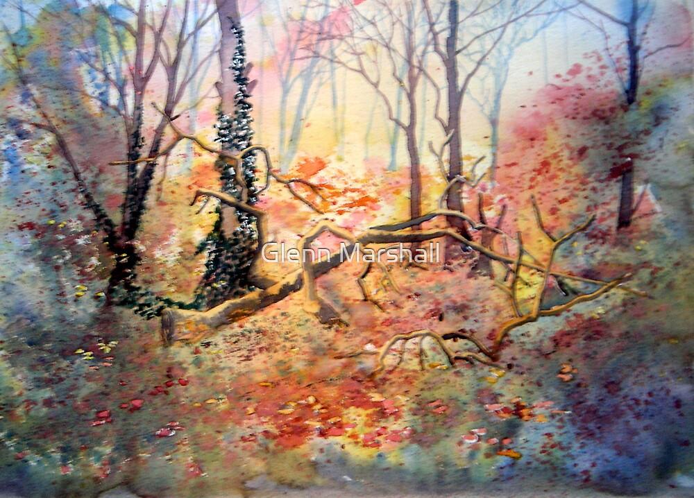 Tanglewood by Glenn Marshall