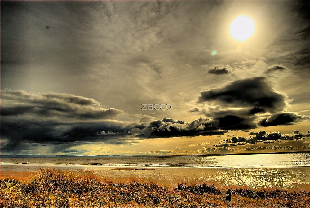morfa 2 by zacco