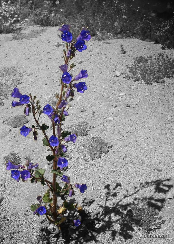 Pruple Desert Flower by Kat Meezan