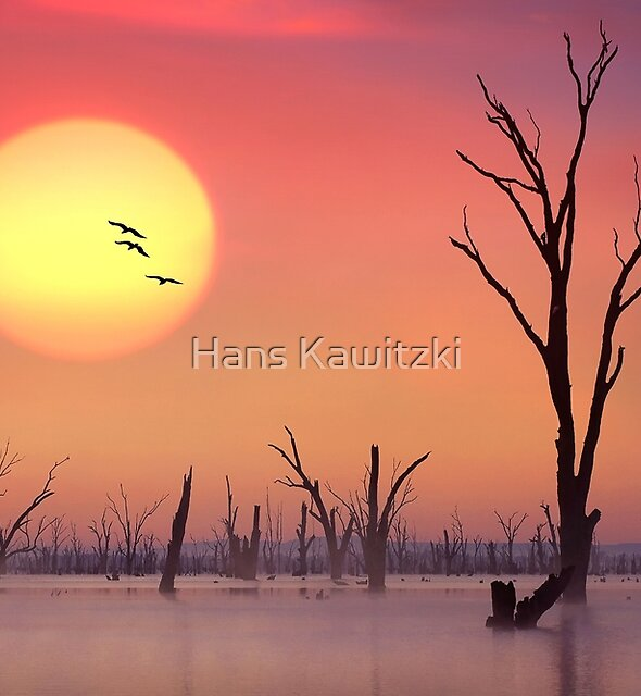 0675 Setting Sun - Lake Mulwala by Hans Kawitzki