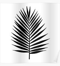 Palm leaf silhouette. Tropical leaves. Poster