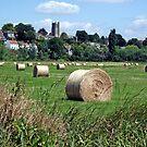 Muchelney, Somerset, England by trish725
