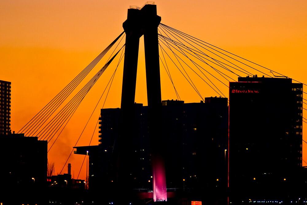 Rotterdam by night by maniax
