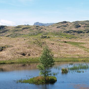 Small Tarn by AlanGNW