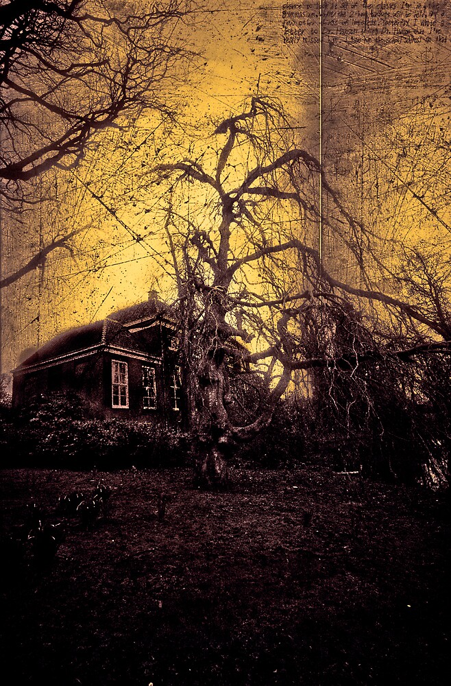 Haunted house by maniax