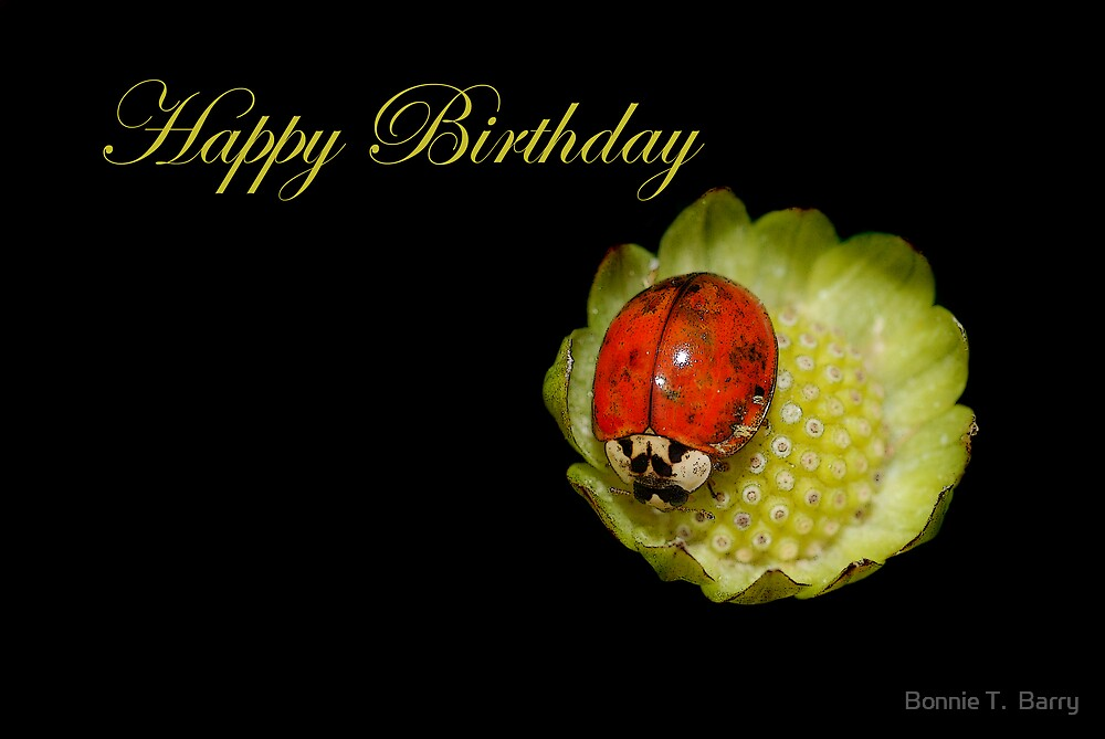 """Happy Birthday Ladybug"" by Bonnie T. Barry 