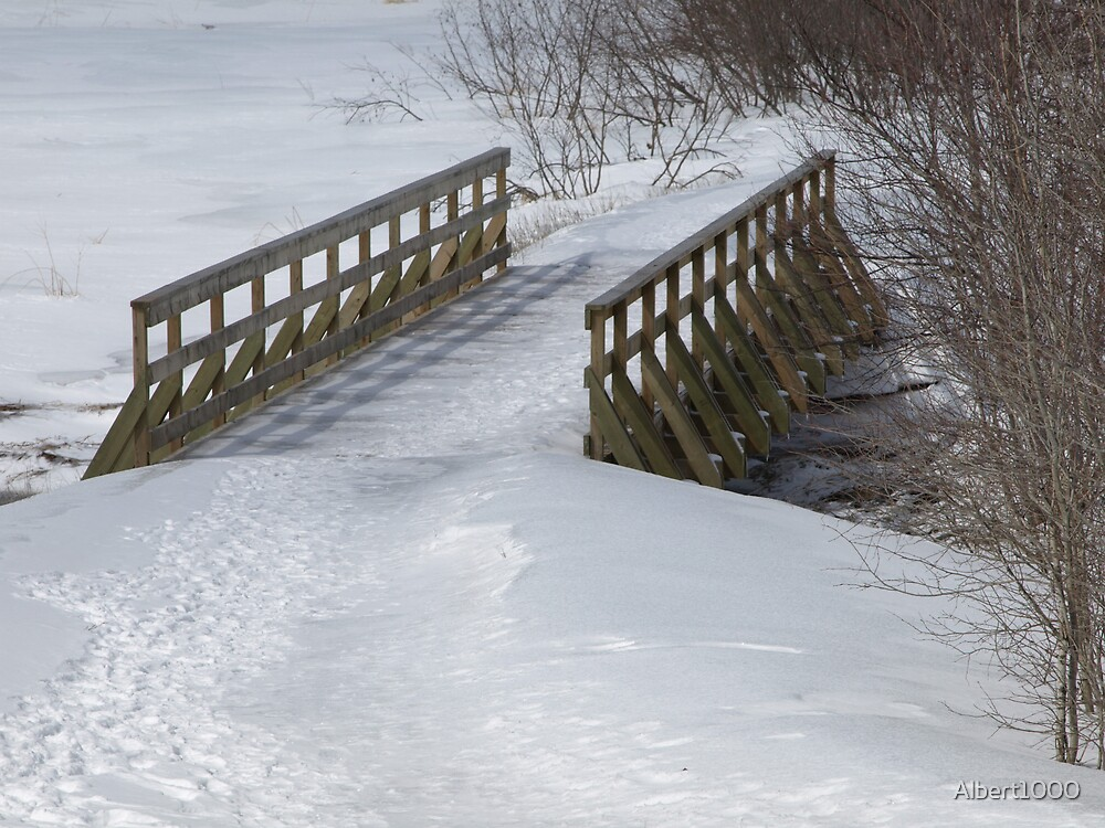 NC A bridge too far by Albert1000