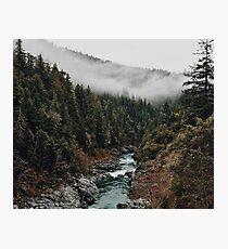 Fluss im Wald Fotodruck