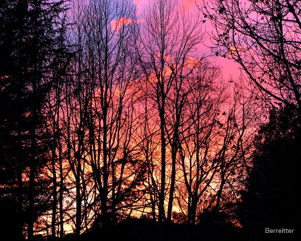 Purple Skies by Berreitter