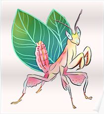 Orchid Mantis is a fairy Poster