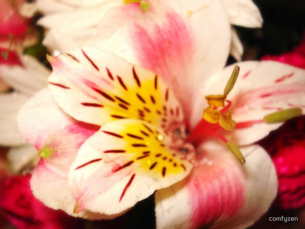 Flower Close up by comfyzen