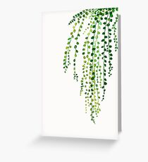 Grüne Schnur der Perlentintenillustration botanische Natur Grußkarte