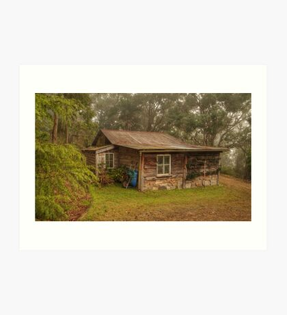 Dave's Cool Shed Art Print