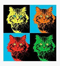 CAT POP ART  YELLOW RED GREEN Photographic Print