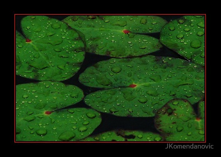 Rain by JKomendanovic