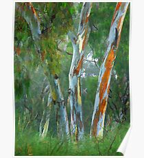 0686 Painted Trees Poster