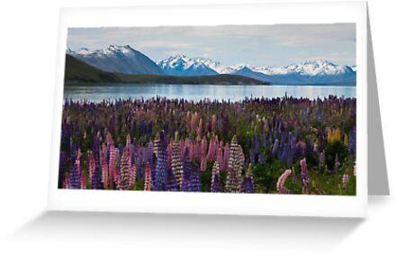 Lake of Serenity by MichaelJP