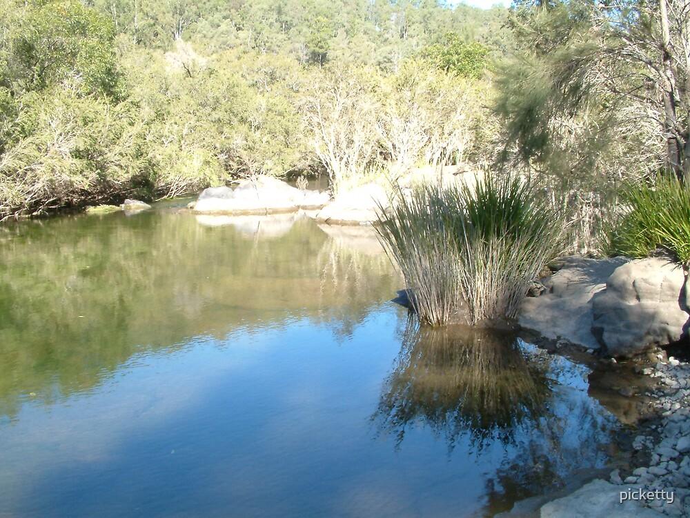 creek by picketty