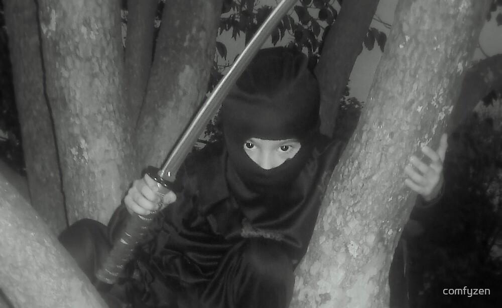 Ninja by comfyzen