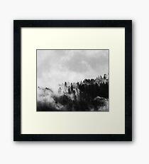 Black & White Misty Forest Framed Print