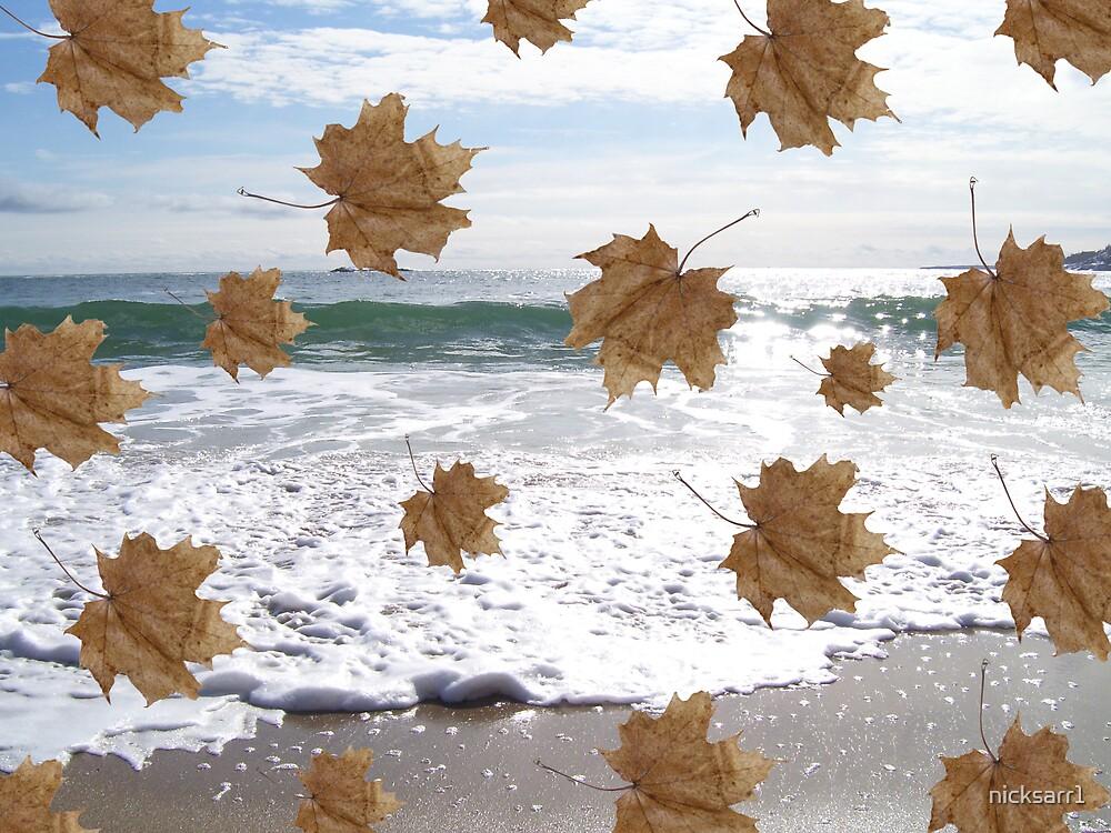 fall/winter by nicksarr1