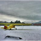 A Yellow Plane in Winter by Wayne King