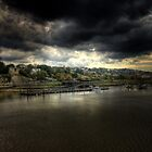 Rochester  by larry flewers